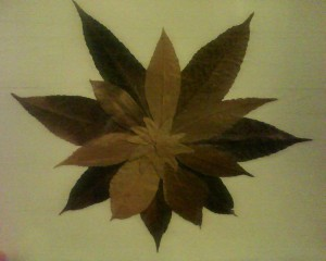 Dried leaves on paper that form a sunflower.