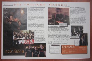 An informational print with text and graphics about Twilight.
