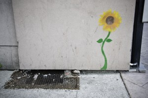 An illustration of a sunflower on a wall.